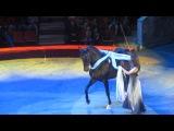 Тульский цирк ^^